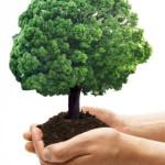 Ecologia della nutrizione AutodifesAlimentare
