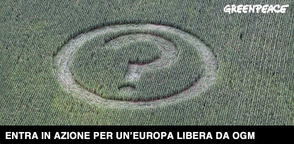 cautela_ogm_greenpeace.jpg