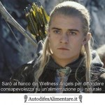 lord-of-the-rings-legolas-autodifesalimentare_it_400