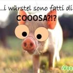 maialino_vegan