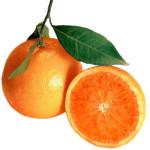 Autodifesa Alimentare: buccia delle arance