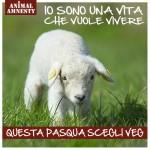 Menù di Pasqua cruelty free