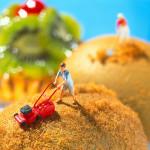 Nutrizione e Arte