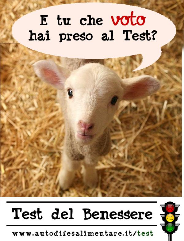 Hai fatto il Test su www.autodifesalimentare.it/test?