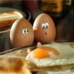 corso di nutrizione Autodifesa Alimentare: le uova