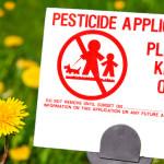Corso di Nutrizione: pesticidi nel piatto